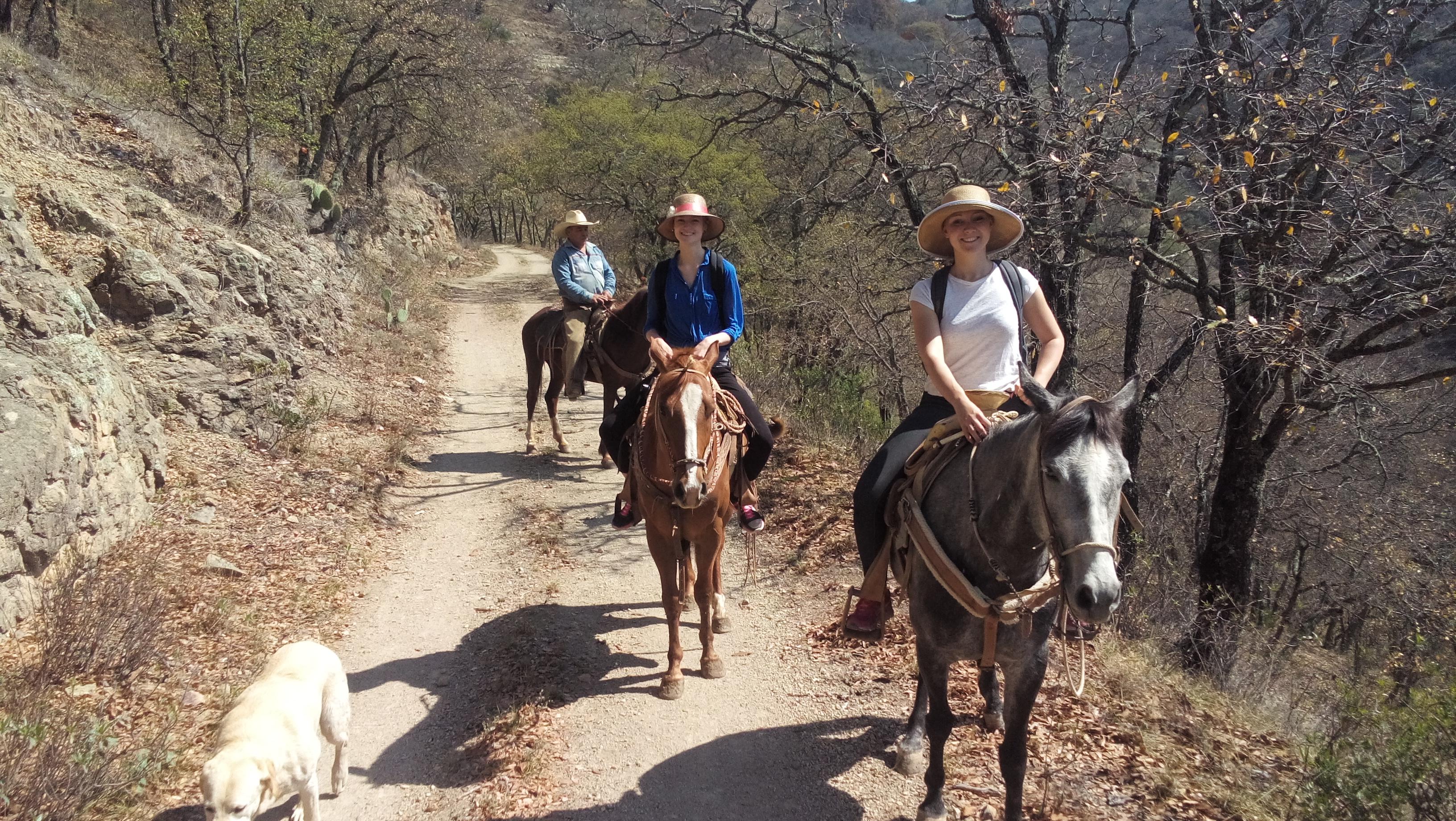 Paseo a Caballo ~ Horseriding